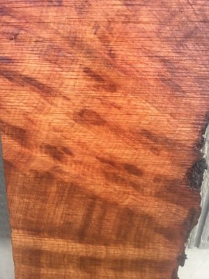 Madrone Wood Slabs